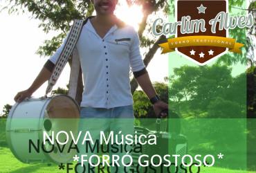 Forró Gostoso - Carlim Alves